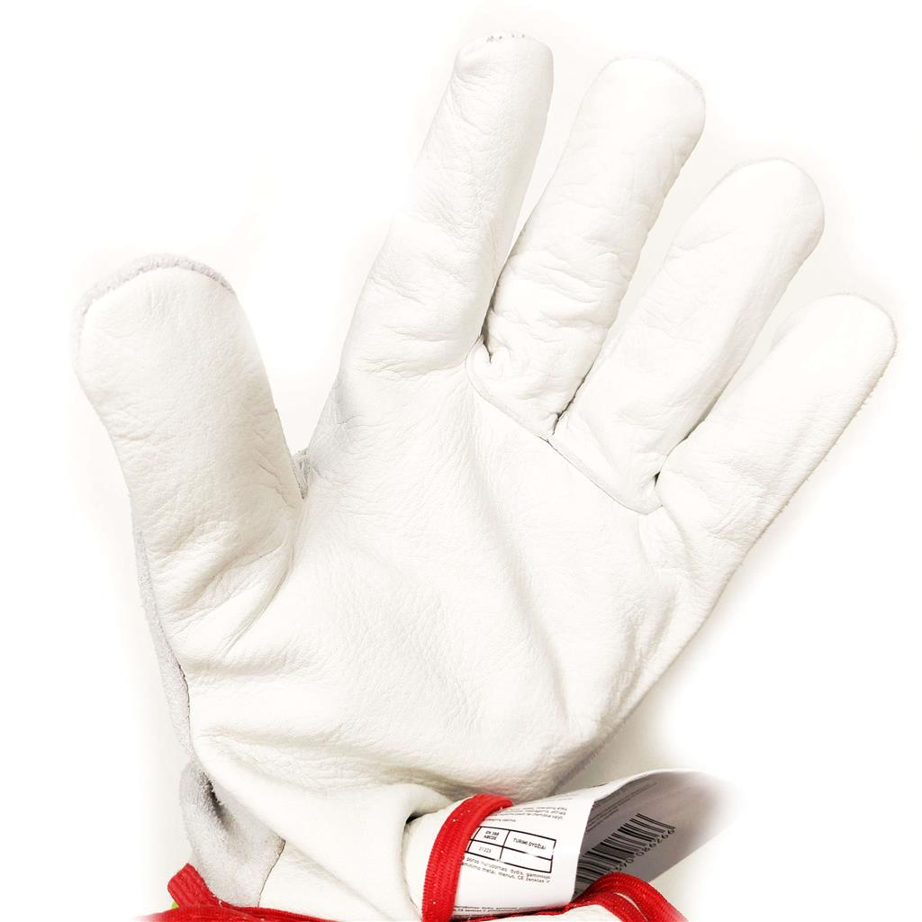 Lether gloves CL-3 XLN